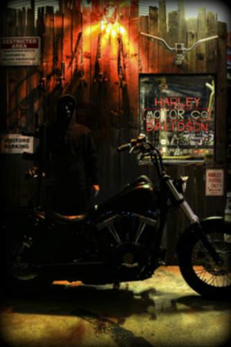 Harley-Davidson FXDB Dyna Street Bob service repair manuals