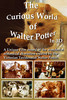 Thumbnail The Curious World of Walter Potter in 3D