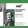 Thumbnail Wagner Siegfried Idyll Sinfonia of London Colin Davis