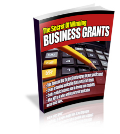 Pay for The Secrets Of Winning Business Grants WIth PLR!