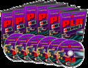 Thumbnail Plr For Newbies Videos series with master resell rights