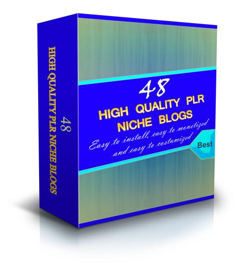 Pay for 48 Plr Niche Blogs (Wp 3.x.x)