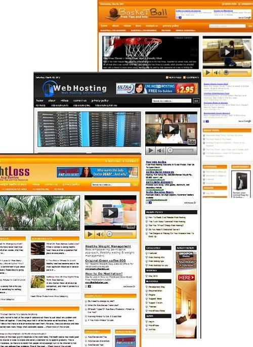 Pay for 3 Niche Blog (Basket Ball,Weightloss,Webhosting)
