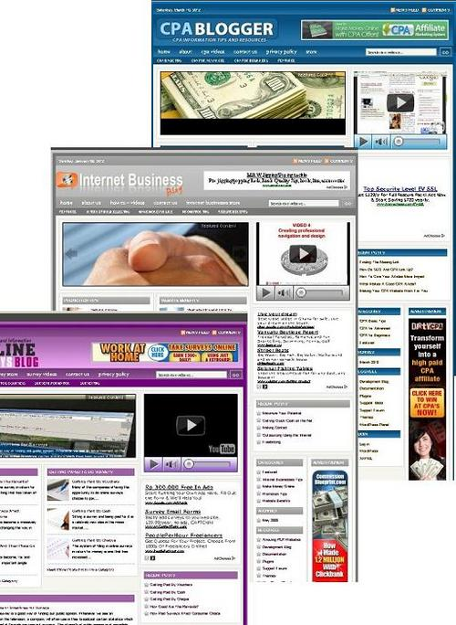 Pay for 3 Niche Blog (internet business,cpa,online survey)