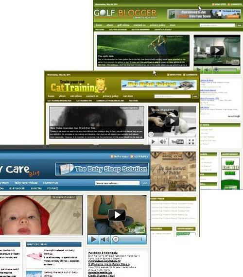 Pay for 3 Niche Blog (Baby Care,Golf,Cat Training)