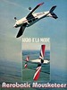 Thumbnail Ratheon Beechcraft A-23 musketeer POH owners manual