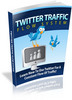 Thumbnail Twitter Traffic Flow System + MRR