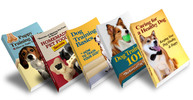 Thumbnail Dog Training Essentials Package (MRR)