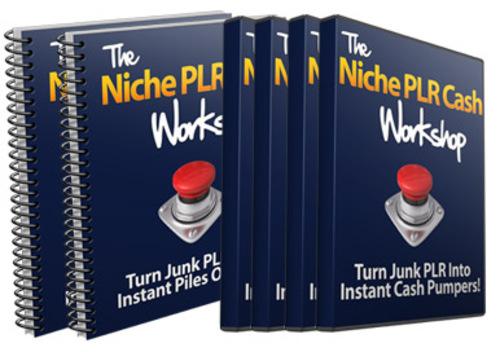 Pay for The Niche PLR Cash Workshop - MRR