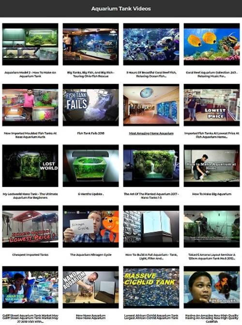 Pay for Aquarium Tank Instant Mobile Video Site