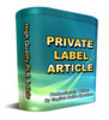 Thumbnail *NEW PLR* 35 Private Label Articles PRL Article