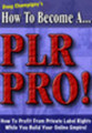 Thumbnail how to become plr pro with MRR