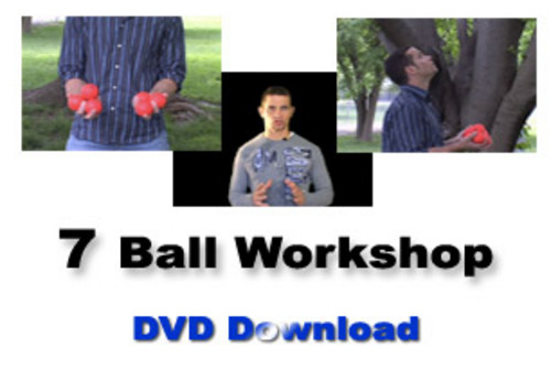 Pay for 7 BALL WORKSHOP.iso