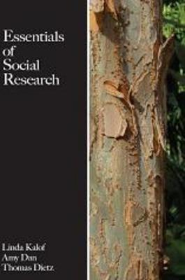 what is social research pdf