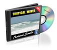 Thumbnail Tropcial Waves