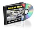 Thumbnail Babbling Brook