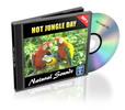 Thumbnail Hot Jungle Day