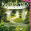 Thumbnail Naturwesenmeditation mit Gnomen, Trollen und Kobolden MUSIK