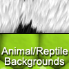 Thumbnail 12 High Quality Animal and Reptile Graphic Backgrounds