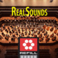 Thumbnail RealSounds Reason ReFill - Bass Clarinet