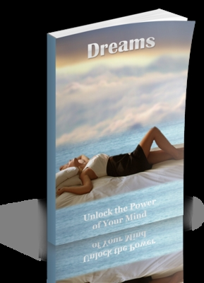 Pay for Dreams Theme and eBook Pack (PLR/RR)