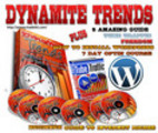 Thumbnail The Dynamite System