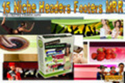 Thumbnail 15 NICHE HEADERS FOOTERS