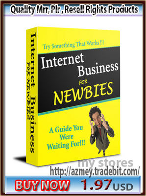 Pay for Internet Business For Newbies