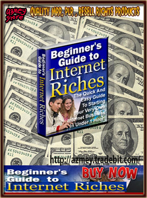Pay for Beginner Guide To Internet Riches