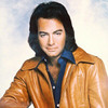 Thumbnail PROFESSIONAL BACKING TRACKS: Neil Diamond