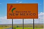 Thumbnail 256 New Mexico PLR Articles