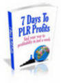 Thumbnail 7 Days To PLR Profits ( Bargain Hunter Warehouse )