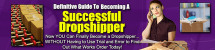 Thumbnail Definitive Guide To Becoming A Successful Dropshipper