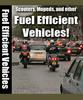 Thumbnail Fuel Efficient Vehicles + 25 FREE Reports ( Bargain Hunter Warehouse )