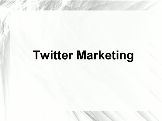 Pay for How to Grow Your Online Business with Twitter Marketing.