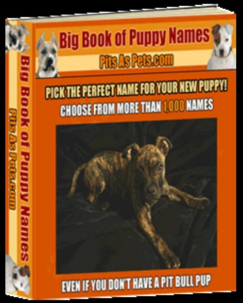Pay for BIG Book of Puppy Names ( Bargain Hunter Warehouse )