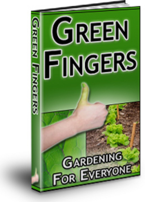 Pay for Green Fingers: Gardening For Everyone bargainhunterwarehouse.com