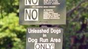 Thumbnail New York City Rules