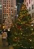 Thumbnail Christmas trees, Rockefeller Center, NYC