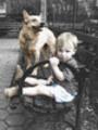 Thumbnail A boy and his dog