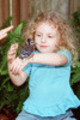 Thumbnail Little girl holds baby blue jay on her arm