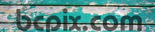 Pay for Dull, green flaking paint, web banner photo