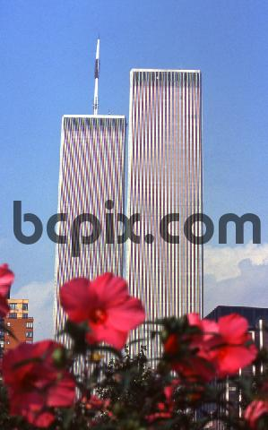 Pay for World Trade Center, New York City with flowers,1999