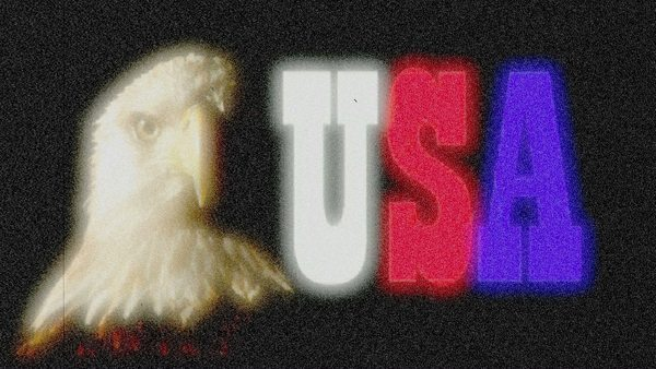 Pay for USA Bald Eagle flickering film