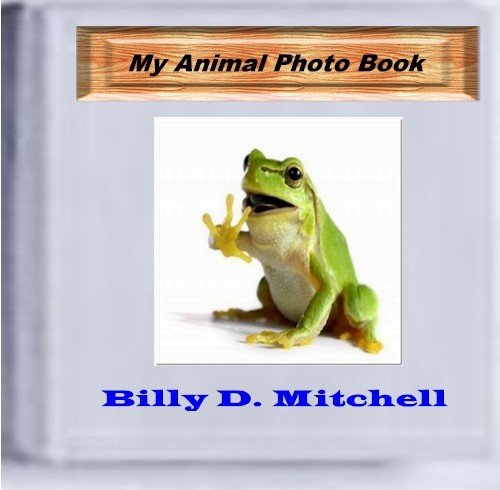 Pay for My Animal Photo Book