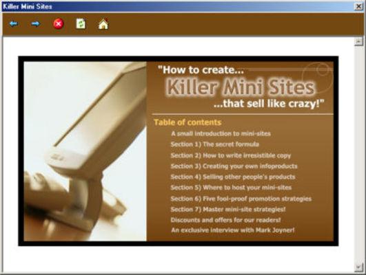 Pay for Killer Mini Sites - Download Audio Books / Teaching