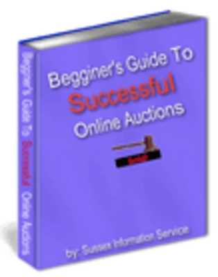 Pay for  Begginer Guide to Successful Online Auctions! -Download eBo
