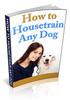 Thumbnail How To Housetrain Any Dog