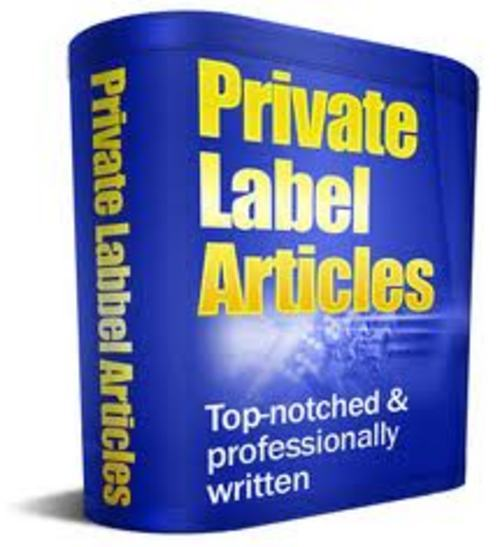 Pay for Plr Articles Internet Business
