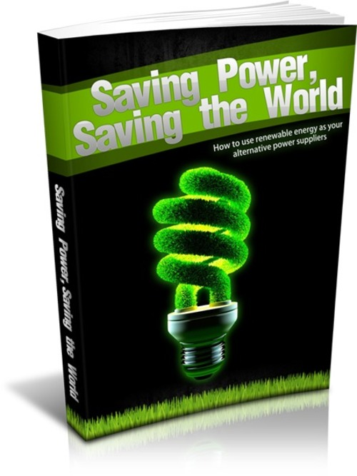 Pay for Saving Power Saving the World
